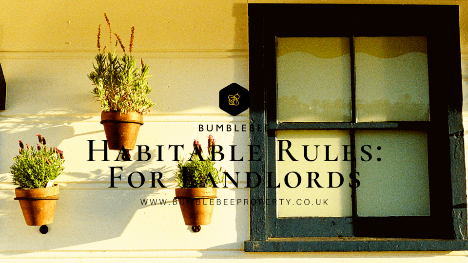 Habitable Rules: For Landlords