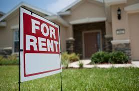 Top Tips for Renting