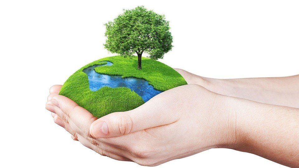 Ways to make your Kent home more eco-friendly