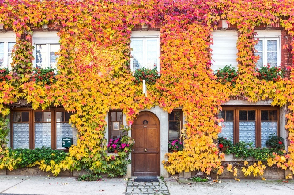 How to Sell a House in Autumn
